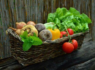 Vitamine b12 carence : Quels sont les symptômes d'une carence en vitamine b12 ?